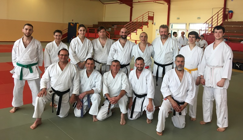 20190310 stage karate didier lupo parthenay