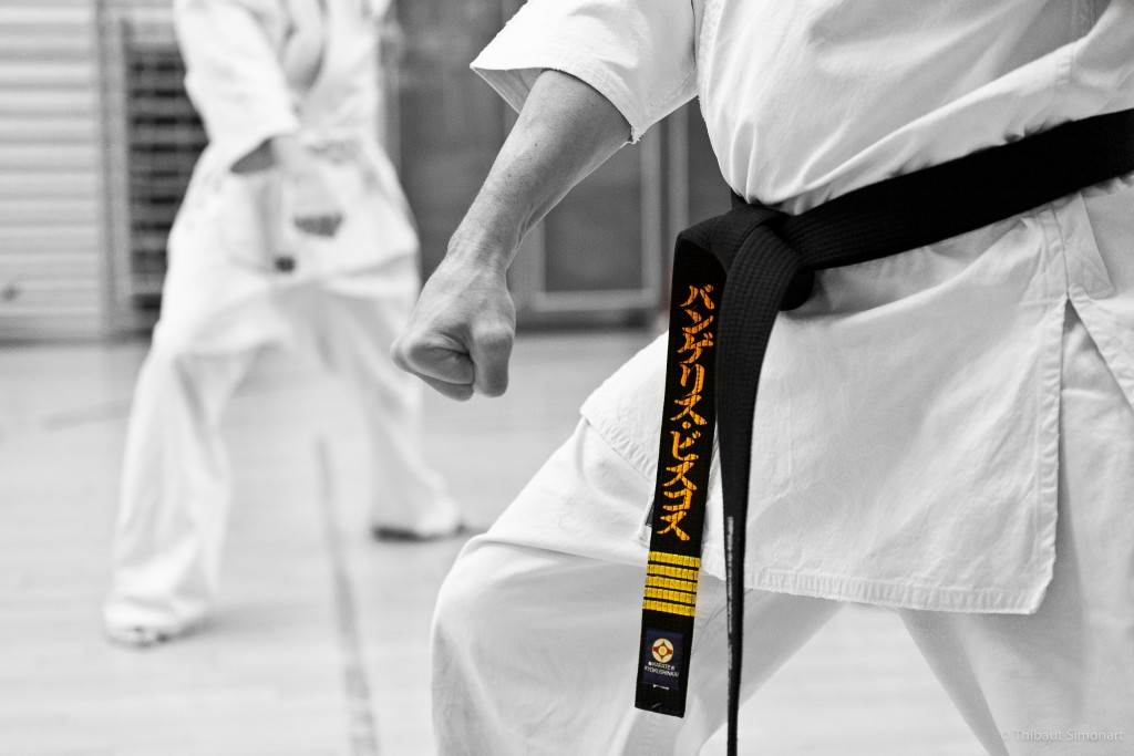 """""All martial artist are beginners; some of us have just been beginning longer."" J.R. West"""