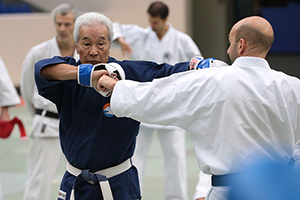 karate david mochizuki